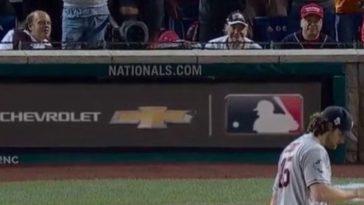 Julia Rose Flashes At World Series Game