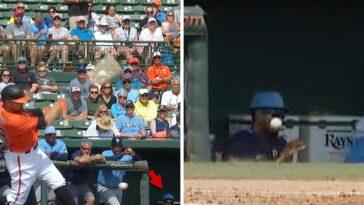 Tampa Bay Rays Foul Ball