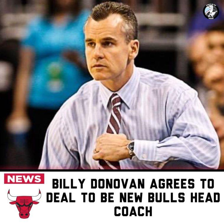 Chicago Bulls Billy Donovan